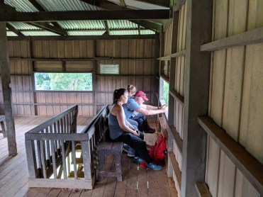 Looking for elephants in the observation tower