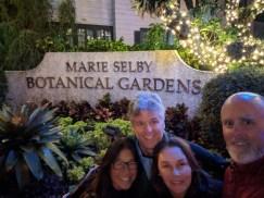 A Christmas-light adventure in Sarasota