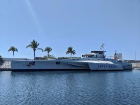 Sea Shepherd's killer trimaran, Brigitte Bardot