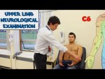 Upper Limb Neuro Exam - (New Version)