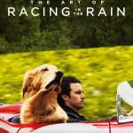 Download Movie: The Art of Racing in the Rain (2019) Mp4