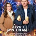 Download Movie Love In Winterland (2020) [HDTV] Mp4