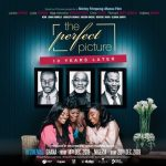 Download Movie Mp4: The Perfect Picture: Ten Years Later