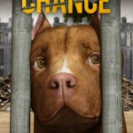 Download Movie Chance (2019) Mp4