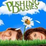 Download Movie Pushing Daisies S02 E08 Mp4