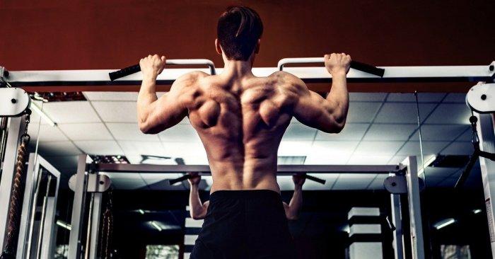 grip strength benefits