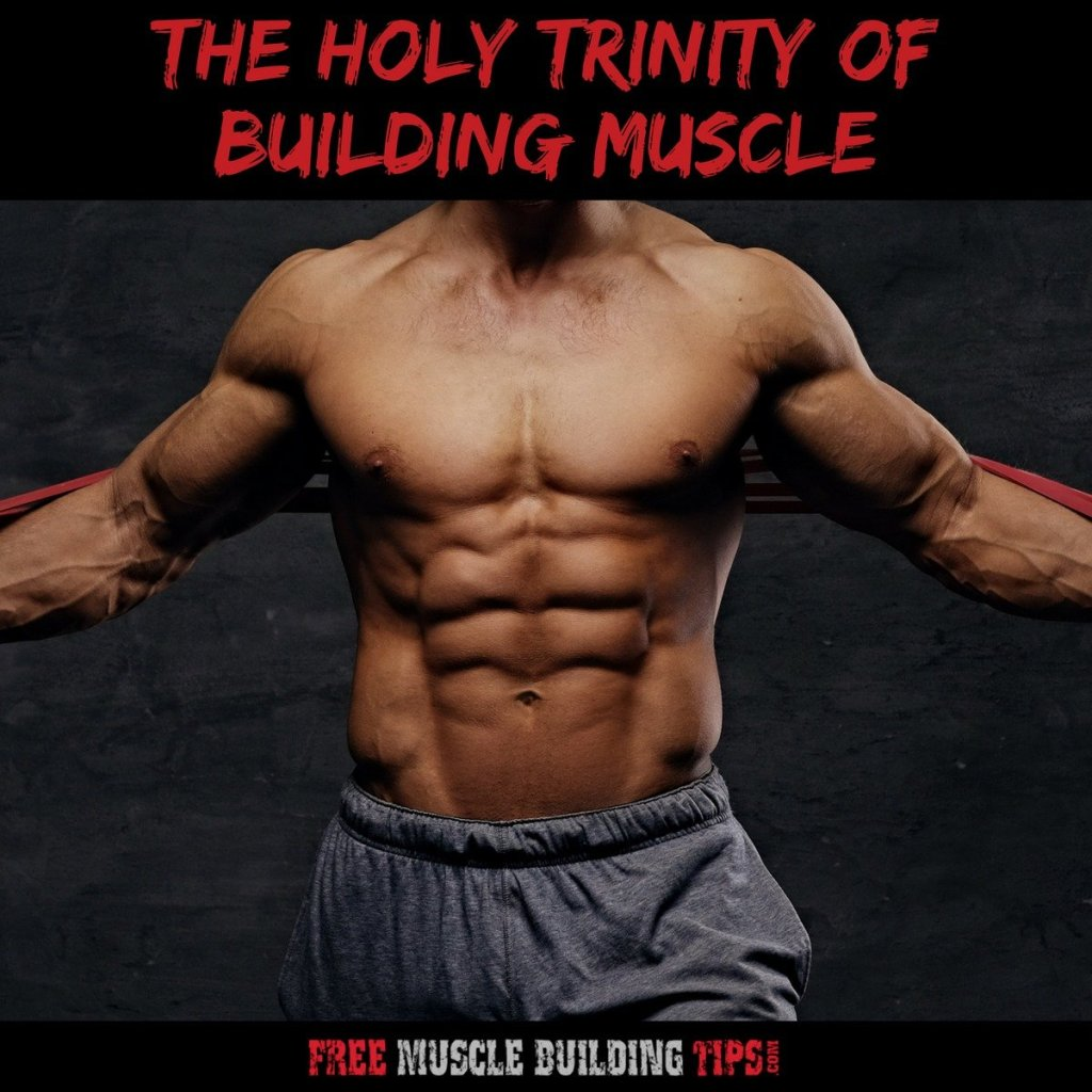 holy trinity of building muscle