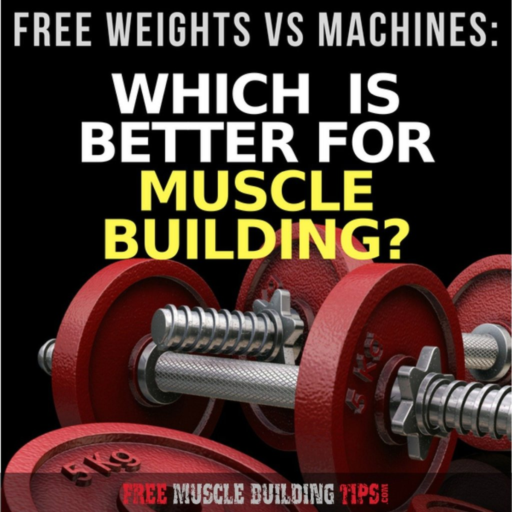 free weights vs machines for building muscle