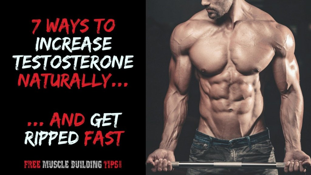 Increase Testosterone Levels Naturally and Get Ripped Fast