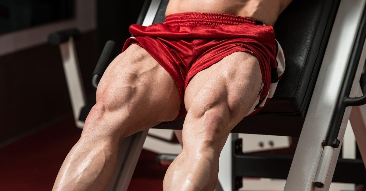 A Muscle Building Program for Huge Legs