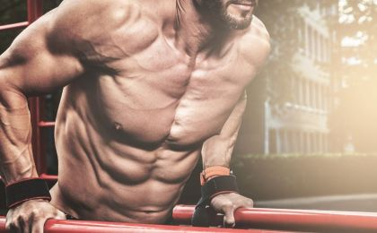 isometric tricep dips