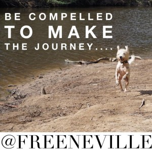 feel_it_real_quote_compelled