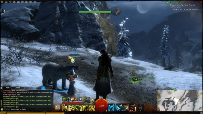 Guild Wars 2 ScreenShot 1