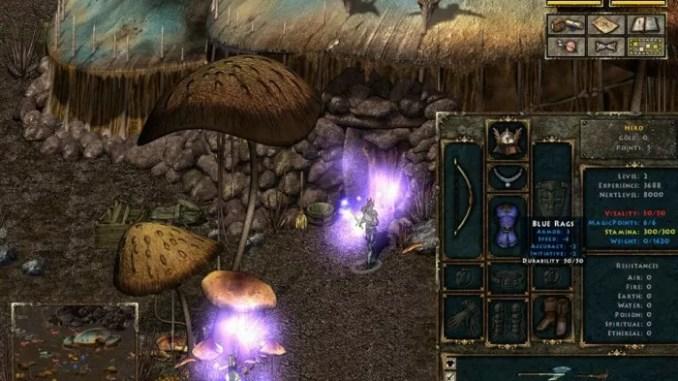 Beyond Divinity ScreenShot 2