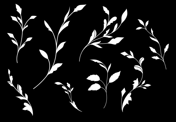 Flourish shapes