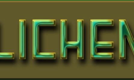 Lichen layer style