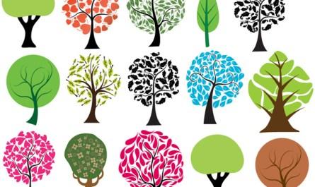 Nature Trees Designs