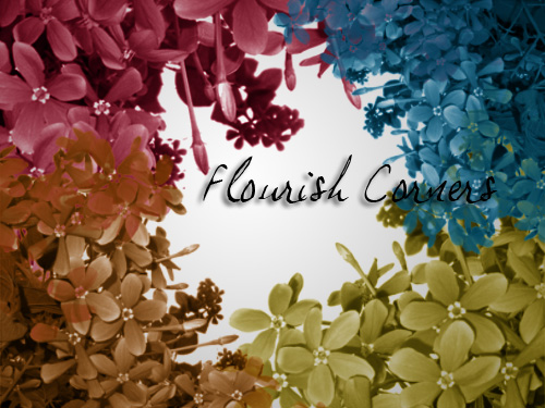 flourish brush