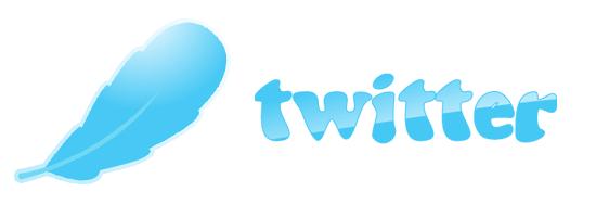 Twitter Wings