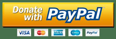 Download Free Paypal Donate Button Png Hd Icon Favicon Freepngimg