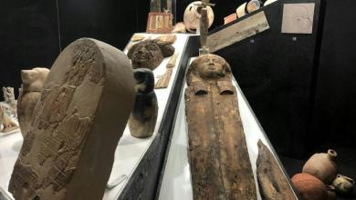 Photo of اكتشاف 30 تابوتا آدميا في مصر يعود لما قبل 3000 عام