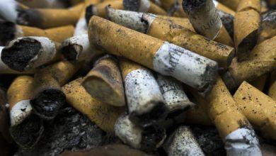 Photo of أعقاب السجائر كارثة بيئية تهدد مستقبل روسيا