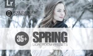 35+ Spring Lightroom Mobile bundle