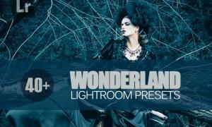 40+ Wonderland Lightroom Mobile bundle