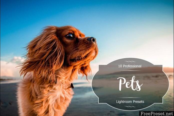Pets Lr Presets