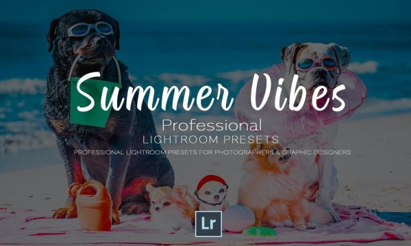 Summer Vibes Pro Lightroom Template
