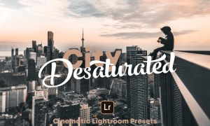 City Desaturated – Lightroom Presets 3064984