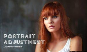 Portrait Adjustment LRT Presets 3019935