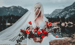 Film Wedding Lightroom Presets 2708417