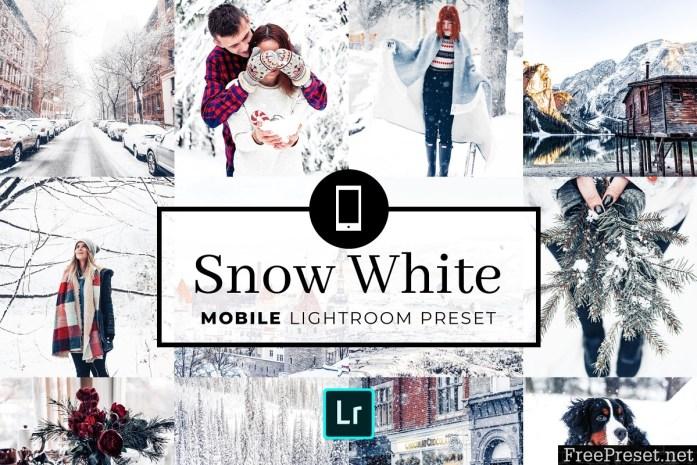 Mobile Lightroom Preset Snow White 3320020