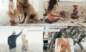 Alexa Jean - The Mobile Vintage Collection