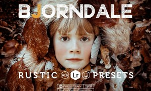 Bjorndale Lightroom Preset Pack 463587