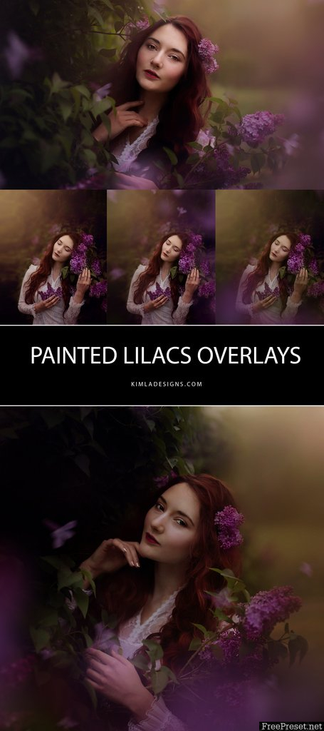 Kimla Designs Painted Lilacs Overlays