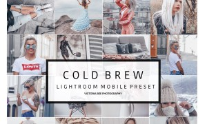 Mobile Lightroom Preset COLD BREW 3529414