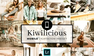 Mobile Lightroom Preset Kiwilicious 3320066