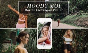 Mobile Lightroom Preset MOODY MOI 3613902