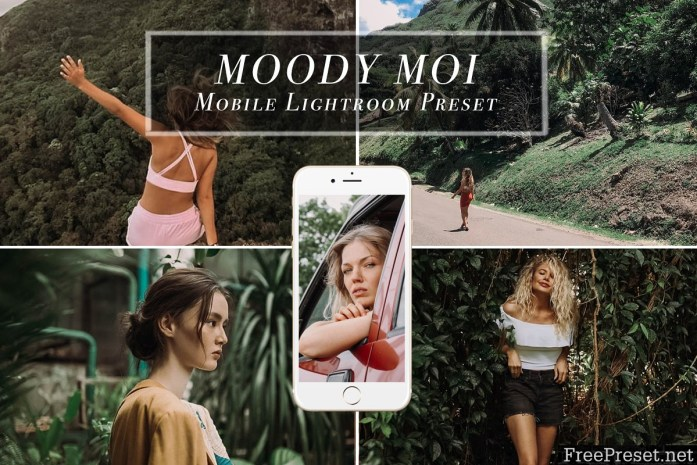 Mobile Lightroom Preset MOODY MOI 3613902