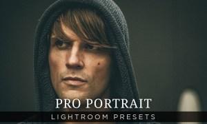 Pro Portrait Lightroom Presets Vol 1  200119