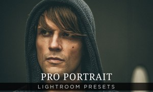 Pro Portrait Lightroom Presets Vol 1  200119