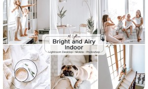 Bright and Airy Indoor Presets 3719578