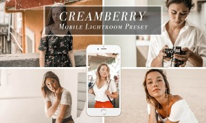 Creamy mobile Lightroom Preset 3471755