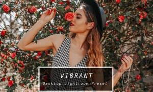 Desktop Lightroom Preset VIBRANT 3622962