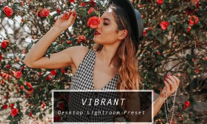 Desktop Lightroom Preset VIBRANT 3622962