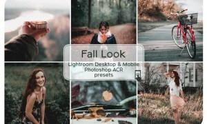 Fall Look Lightroom Desktop and Mobile Presets 2689825