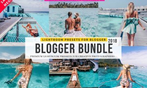 Pro Blogger Lightroom Presets Bundle 2840552