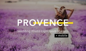 Provence Wedding Photo Lightroom Presets 2YVCWDX